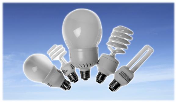 ompact fluorescent light bulbs (CFLs) Ecolamp recycling and fluorescent lamp recycling storage solutions
